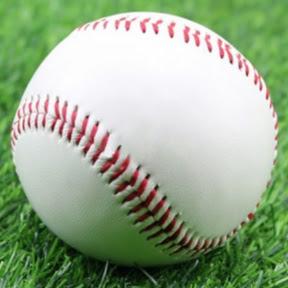 埼玉高校野球