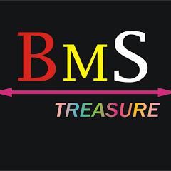 BMS TREASURE