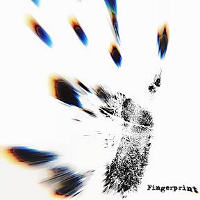 The Fingerprint Channel
