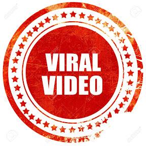 Funny Viral Videos