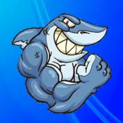 Tubarãoo
