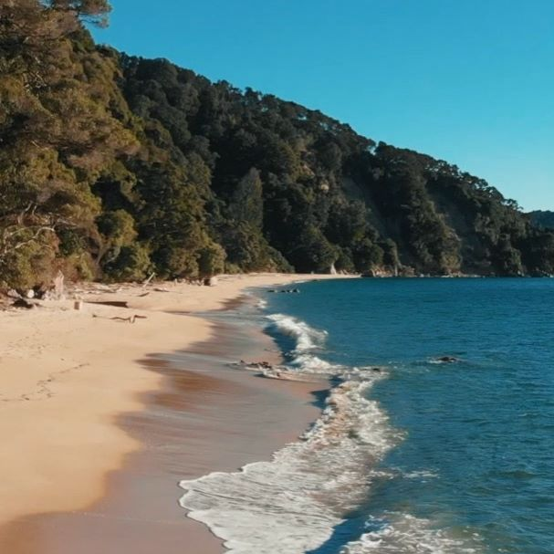 Beach Hiking Adventure New Zealand