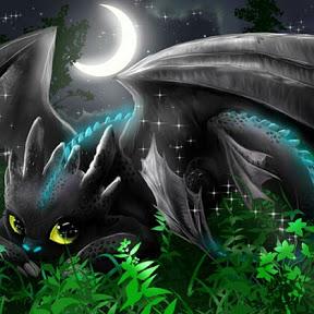 Furia nocturna