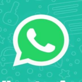 Melhores Vídeos do Whatsapp
