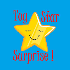 Toy Star Surprise