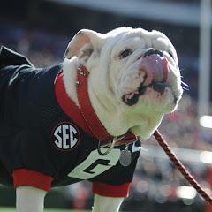 Georgia Bulldogs on Dawg Post