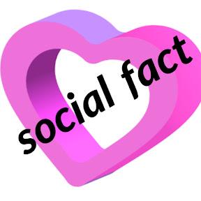 social fact