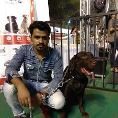 Ashish Dog Trainer In Mumbai