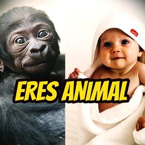 Eres ANIMAL