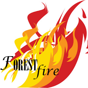 Wake Forest High School Forest Fire