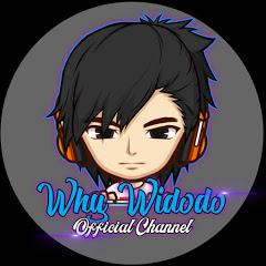 Why Widodo