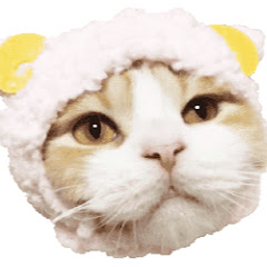 猫とトキ 猫動画ドローン/DIY/グッズ/家電 幸せ登録❤