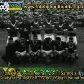 Palmeiras Anos 70