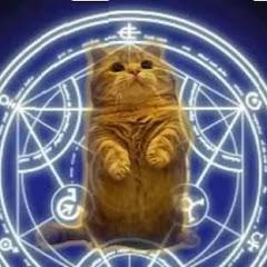 羽貓-FR CAT