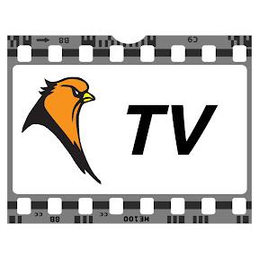 Oriole TV