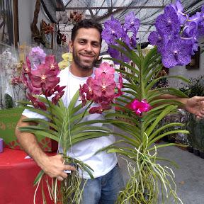especial orquideas
