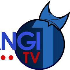 BANYUWANGI 1 TV