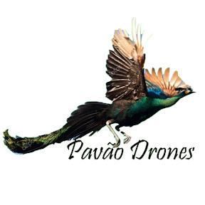 Pavão Drones