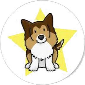看中国的狗哥DogChinaShow