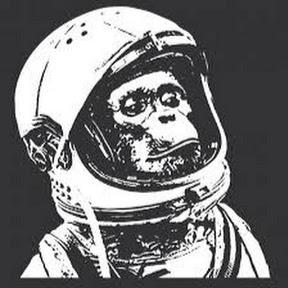 Astronaut Chimpanzee
