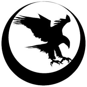 Nighthawk Custom