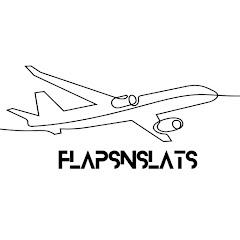 Flapsnslats