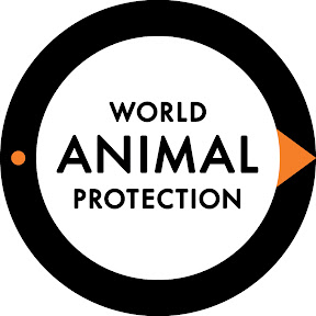 World Animal Protection Australia