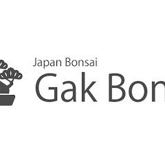 gak bonsai