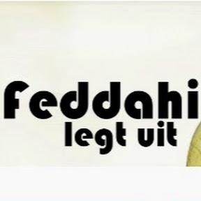 M. Feddahi