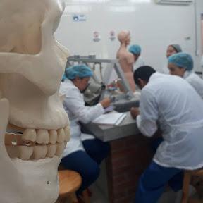 Radiologia Para Principiantes