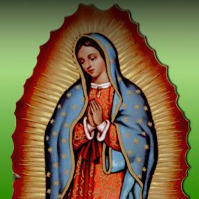 La Rosa De Guadalupe HD