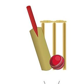 Cricket Best 2