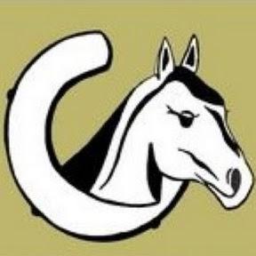Stichting Paard In Nood
