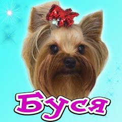 Волшебная собака Буся