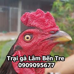 Trại Gà Lâm Bến Tre 0909095677