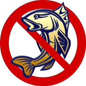 О рыбаках и рыбе