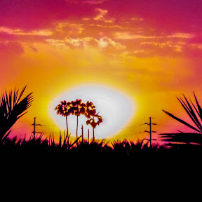 Coachella Valley Productions