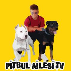 Pitbull Ailesi TV