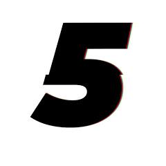 Artikel 5