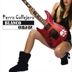 Perro Callejero - Topic