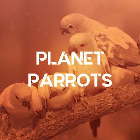 Planet Parrots