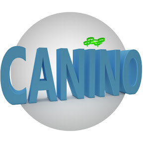 Canino's