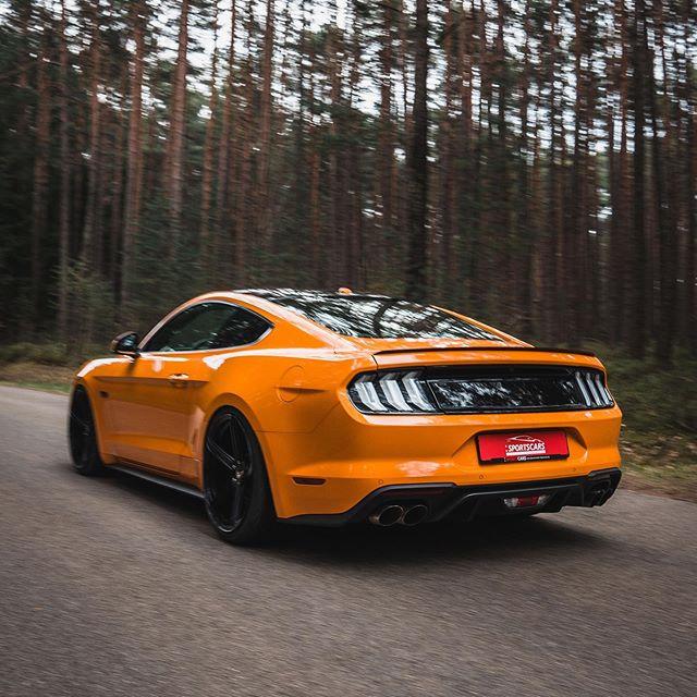 Hier noch ein paar Impressionen vom Mustang GT🚘 @bierschneidersportscars  @auto_bierschneider  ______  #carporn #carphotography #carphotopage #carphotograph #carporn #autos #automotive #mustang #fordmustang #carsofinstagram #instacar #drivingperformance #getoutanddrive #drivetastefully #autos #ford #sportscars #drivetribe #carsandcoffeegermany #carbloggergermany #fordmustanggt #carblogger #drivetastefully #fordfanfoto
