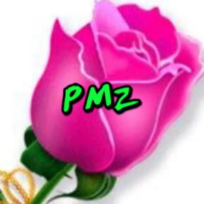 Plaza music zone