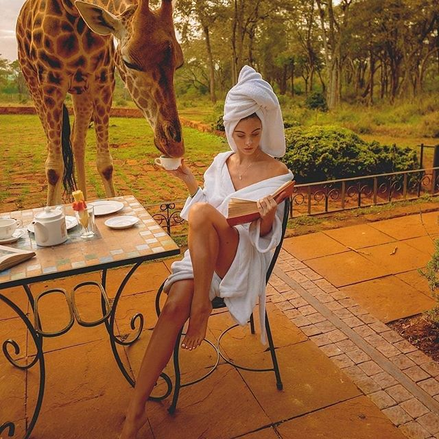 Breakfast with a Giraffe ☕ Definitely on my bucketlist! How about you? I guess we better hurry as these amazing creatures are now on the endangered species list too 😔😔 Tag a friend who may be able to save these beauties! 👇 . . #saveouranimals . . 📸 Photo: @badboi