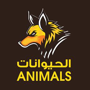 الحيوانات - Animals