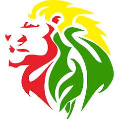 Lion KinG I ليون