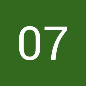 07 Losalios