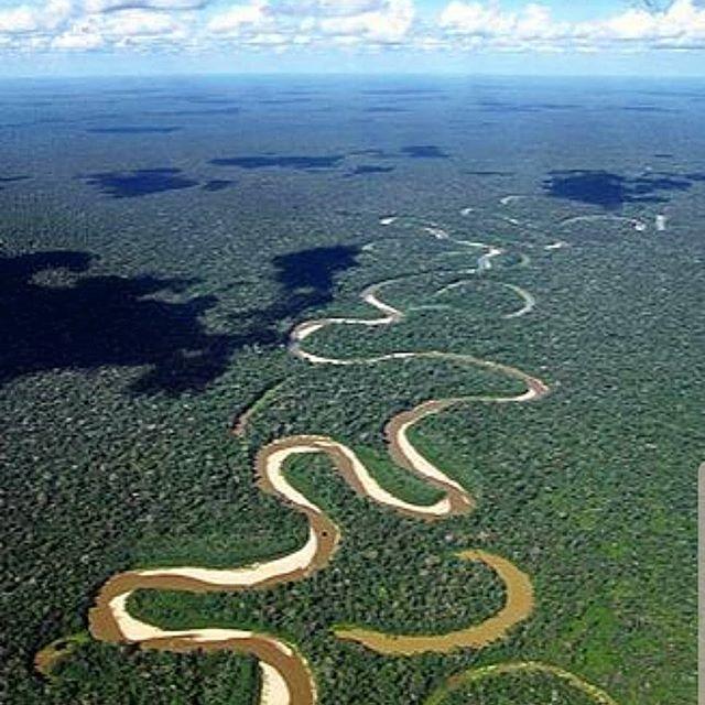 Quem puraqui já visitou a Amazônia?  O Dia da Amazônia é celebrado anualmente em 5 de setembro.  Esta data foi criada com o intuito de conscientizar as pessoas sobre a importância da maior floresta tropical do mundo e da sua biodiversidade para o planeta.  O dia escolhido faz referência a 5 de setembro de 1850, quando o Príncipe D. Pedro II decretou a criação da Província do Amazonas (atual Estado do Amazonas).