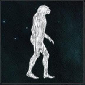 Papo de Primata
